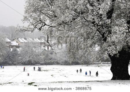 Snowy Winters Scene