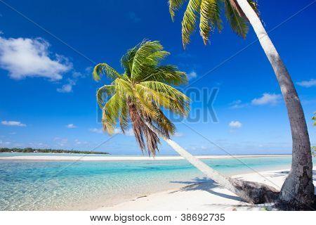 Beautiful beach at Tikehau atoll in French Polynesia