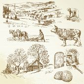picture of milk products  - rural landscape - JPG