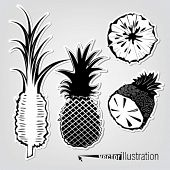 Set of vector decorative pineapples