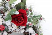 splendid single red rose in bouquet