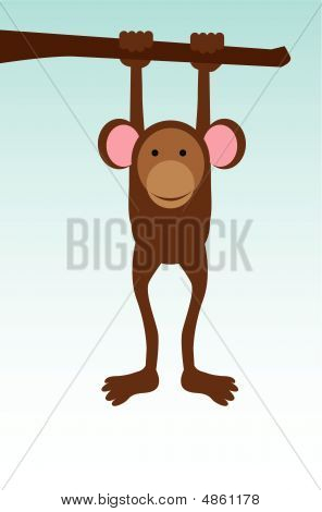 Monkey Hanging On Tree