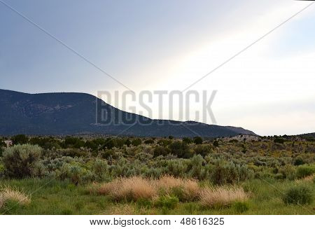Desert Meadow with Storm clouds