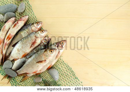Fishes on fishing net on wooden background