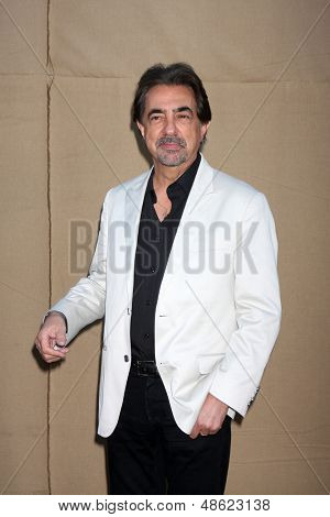 LOS ANGELES - JUL 29:  Joe Mantegna arrives at the 2013 CBS TCA Summer Party at the private location on July 29, 2013 in Beverly Hills, CA