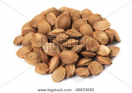 A Pile Of Apricot Kernel