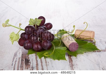 Red Wine Grape Still Life.