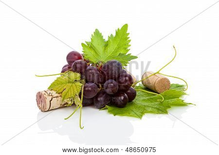 Luxurious Wine Background.