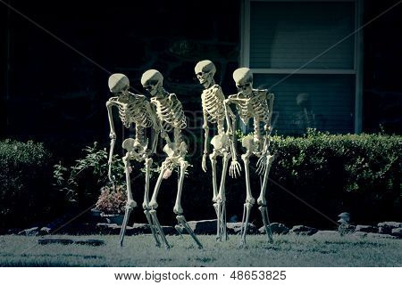Walking skeletons