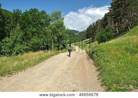 Woman trekking on a winding dirt lane, road ascending a mountain