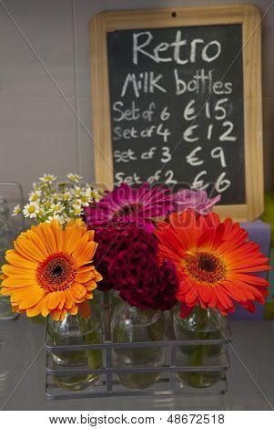 Milk bottle flower pots