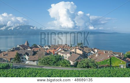 Cully,Lake Geneva,Switzerland