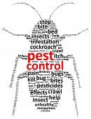 image of cockroach  - Insects Pest Control Word Cloud Vector Illustration - JPG
