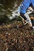 image of riding-crop  - Low section of young man riding mountain bike through forest - JPG