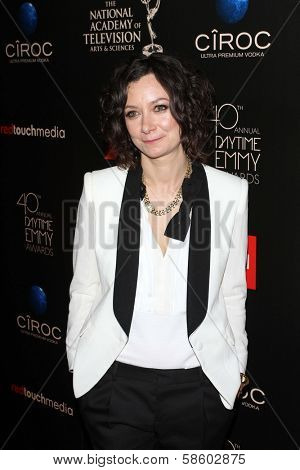 Sara Gilbert at the 40th Annual Daytime Emmy Awards, Beverly Hilton Hotel, Beverly Hills, CA 06-16-13