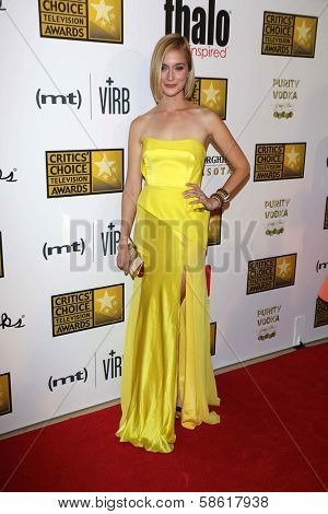 Caitlin Fitzgerald at the 3rd Annual Critics' Choice Television Awards, Beverly Hilton Hotel, Beverly Hills, CA 06-10-13