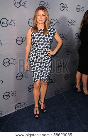 Sasha Alexander at the TNT 25th Anniversary Party, Beverly Hilton Hotel, Beverly Hills, CA 07-24-13