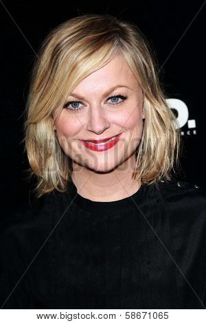 Amy Poehler at the
