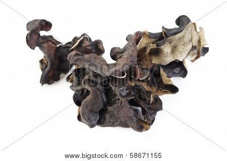 Dried Black Fungus (jew's Ear Mushroom ) On White
