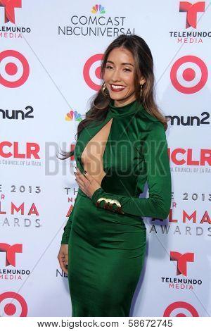 Fernanda Romero at the 2013 NCLR ALMA Awards Arrivals, Pasadena Civic Auditorium, Pasadena, CA 09-27-13