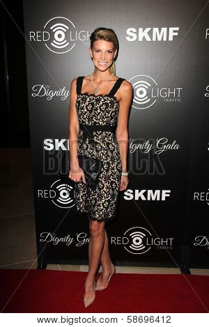 Clark Gilmer Dignity Gala and Launch of Redlight Traffic App, Beverly Hilton Hotel, Beverly Hills, CA 10-18-13