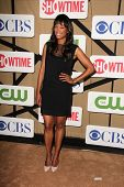 Aisha Tyler at the CBS, Showtime, CW 2013 TCA Summer Stars Party, Beverly Hilton Hotel, Beverly Hill
