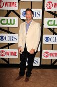 Michael Weatherly at the CBS, Showtime, CW 2013 TCA Summer Stars Party, Beverly Hilton Hotel, Beverl
