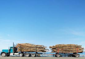 foto of logging truck  - Loggin truck parked on roadside by ocean - JPG