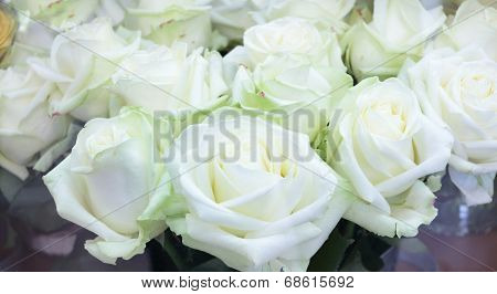 Close-up Of Bright Bunch Of Fresh Big Beautiful White Roses In Shop