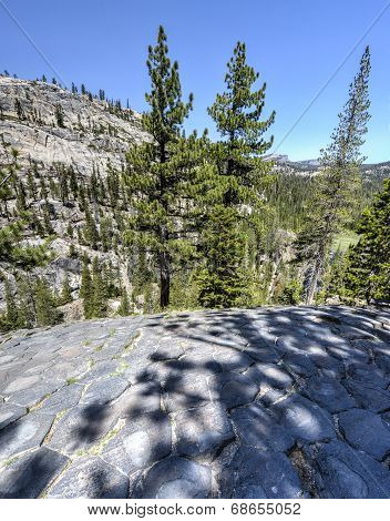 Top Of Basalt Formations At Devil's Postpile National Monument