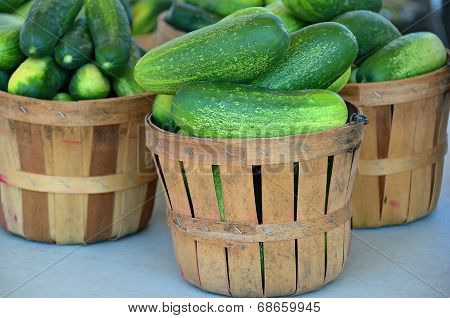ripe cucumbers in baskets