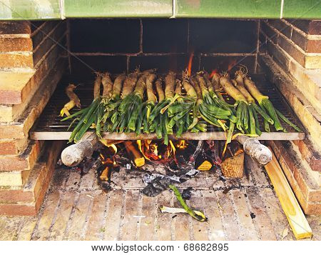 Calçots, catalan sweet and young onions