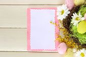 stock photo of mimosa  - Empty card with easter eggs and mimosa flowers - JPG