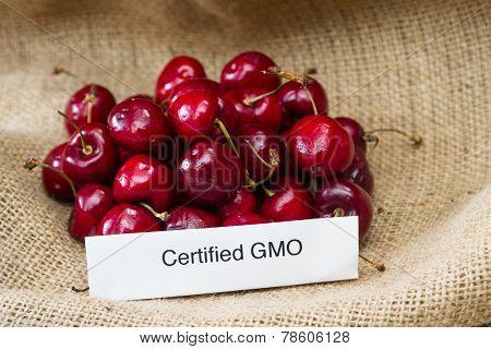 Gmo Cherries