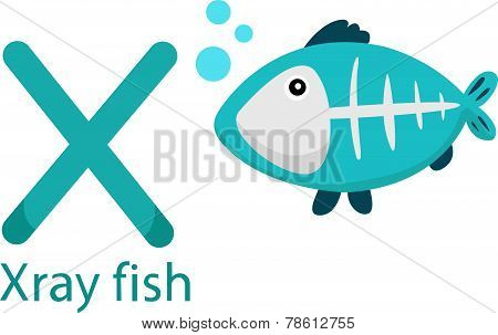 Illustrator of X with x ray fish