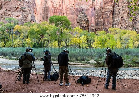 autumn photographers in Zion NP