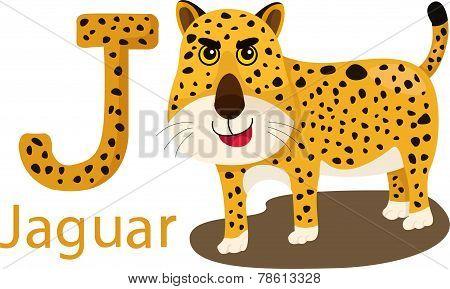 Illustrator of J with jaguar
