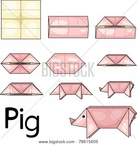 Illustrator of pig origami