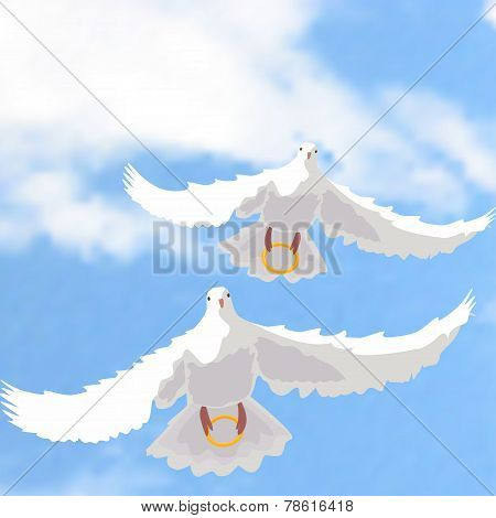 Illustration Of Doves With Rings