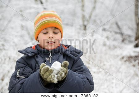Boy Keeps In Hands Snowball In Wood In Winter