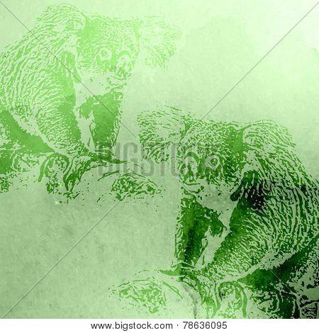 vector vintage illustration of green watercolor koala bears on t