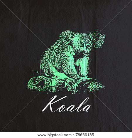 vector vintage illustration of a green koala bear on the old bla