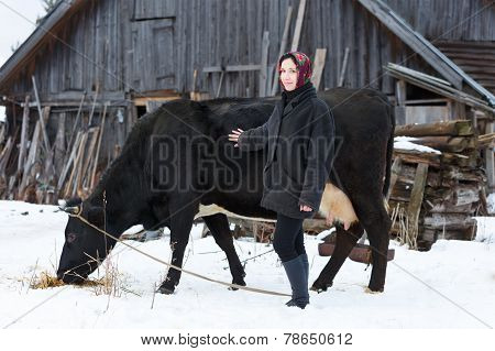 country girl takes care of  cow