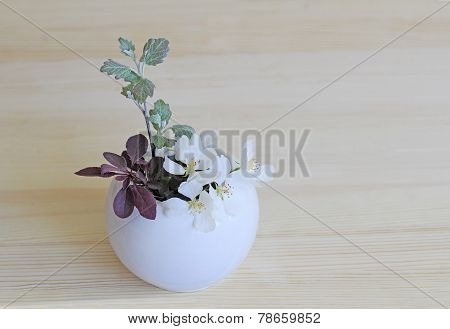 Ikebana With Sprigs Of Blue Spruce, Silver Poplar And Barberry In A Vase
