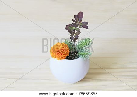 Ikebana With Orange Flower And Branches Of Blue Spruce And Barberry In A Vase