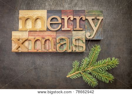 Merry Xmas (Christmas) greetings or wishes  in vintage letterpress wood type over grunge metal background with spruce
