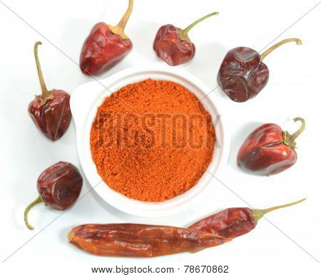 Red chilli pepper and powder