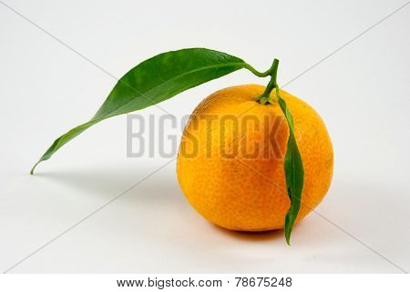 Tangerine, Mandarin, Clementine Isolated On White