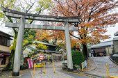 stock photo of inari  - Torii gate at Fushimi Inari - JPG