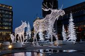picture of rudolph  - Christmas moose decoration made of light in central Stockholm - JPG